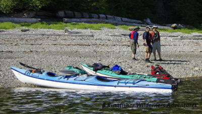 Great Bear Rainforest Expedition Kayak Tours