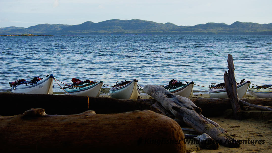 Great Bear Rainforest Kayak Expedition - Kayaks on the beach looking to Millbanke Sound.