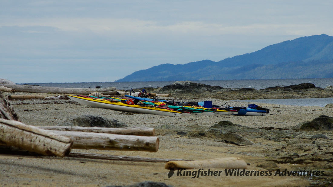 Great Bear Rainforest Kayak Expedition - Kayaks on the beach with Laredo Sound and Princess Royal Island in the background.