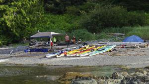 Sea Otter Explorer Kayak Tour - A kayak beach camp on a small island in Nuchatlitz.