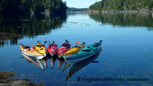 Whales and Grizzly Bears Kayak Tour - Floating kayaks tied to shore at one of our favourite lunch stops.