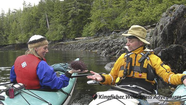 Orca Waters Explorer Kayak Tour - At low tide sea urchins are close to the surface.