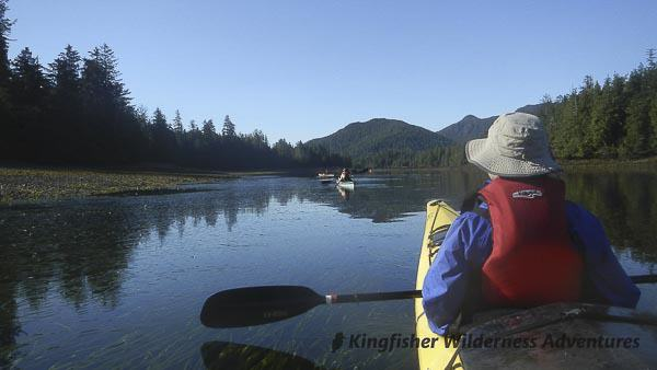 Southern Gwaii Haanas Kayak Tour - Kayaking and exploring the shoreline at low tide.