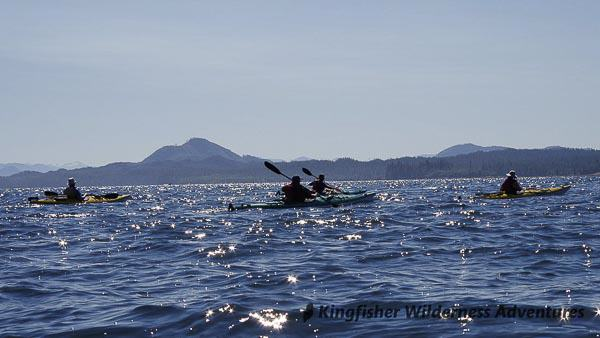 Great Bear Rainforest Kayak Expedition - Kayaking in the Great Bear Rainforest.