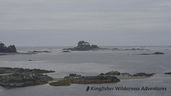 Sea Otter Explorer Kayak Tour - Looking over some of the islets that make up Nuchatlitz Provincial Marine Park.