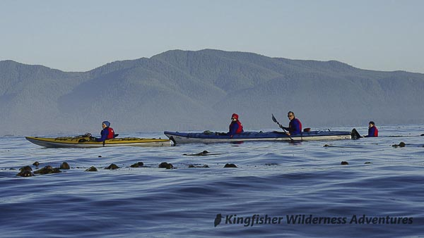 Sea Otter Explorer Kayak Tour - Kayaking the west coast of Vancouver Island