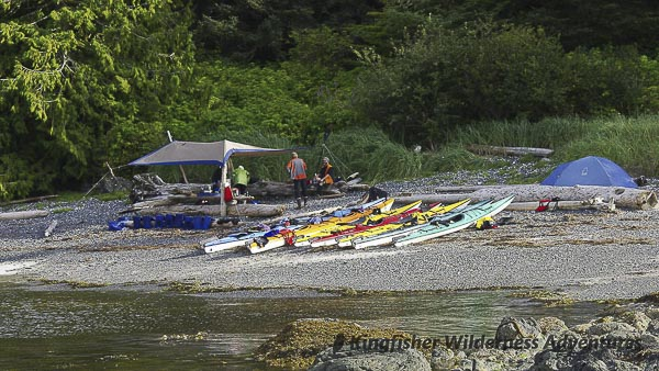 Sea Otter Explorer Kayak Tour - A kayak beach camp on a small island in Nuchatlitz.