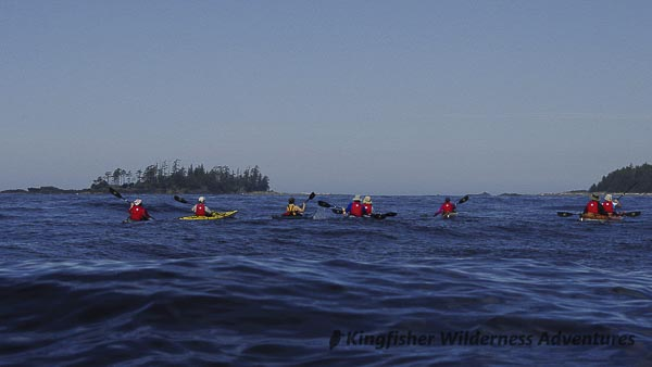 Sea Otter Explorer Kayak Tour - Kayaking toward Catala and Twin Islands.