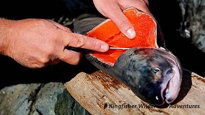 Filleting sockeye salmon for dinner.