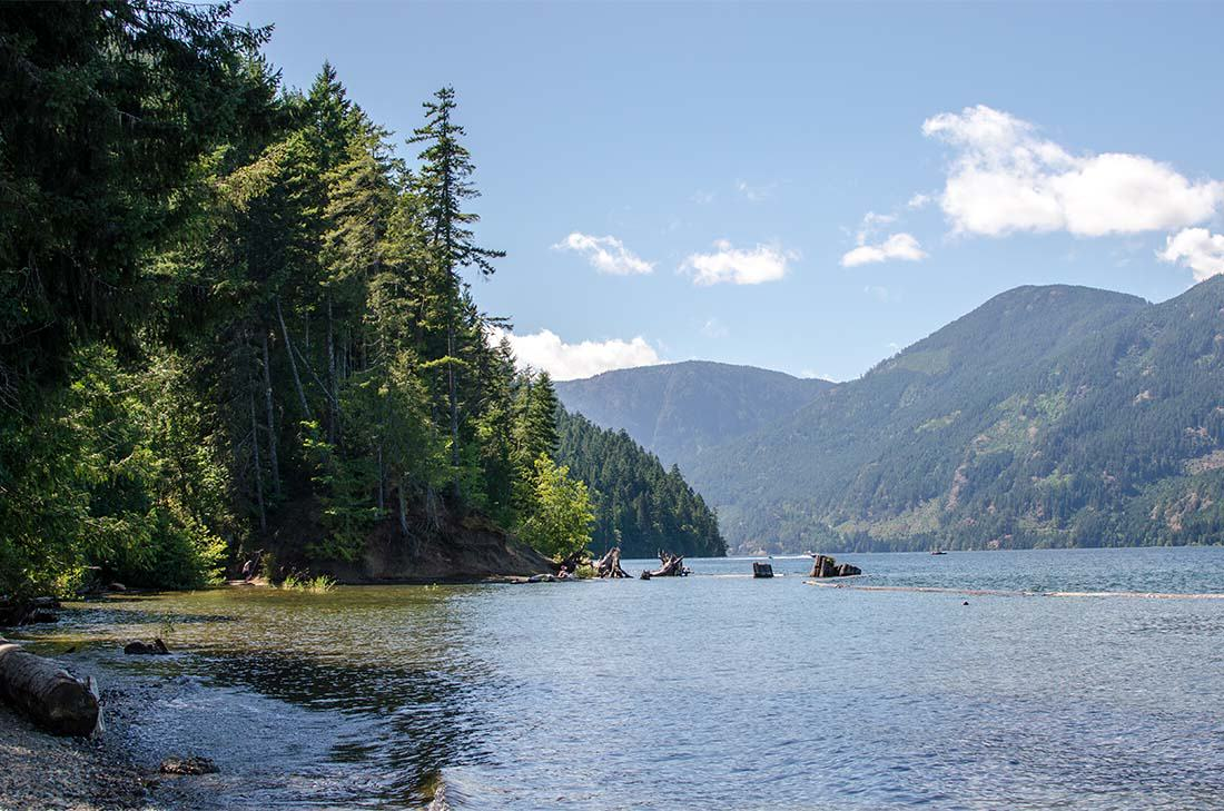 Things To Do on Central Vancouver Island - Kingfisher Wilderness Adventures Kayak Tours