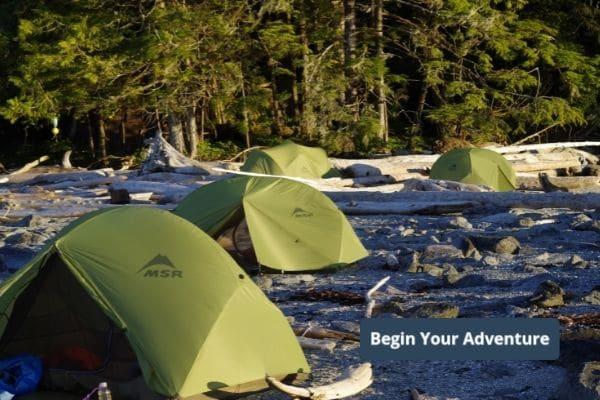 Great Bear Rainforest- Begin Your Adventure